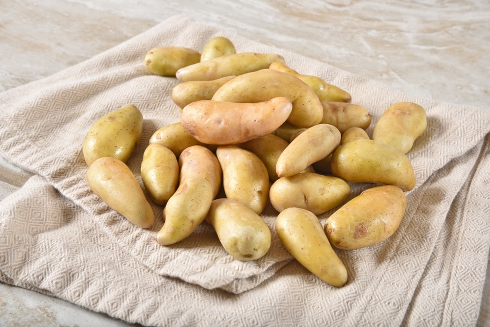 Cook The Baby Dutch Yellow Potatoes